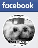 FB-Pekingesikerho
